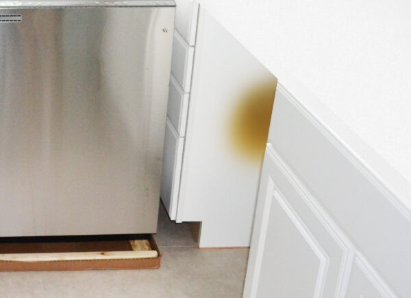 Oven Cavity Heat Burn Damage